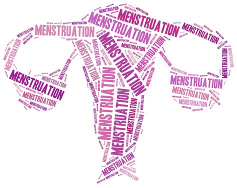 List Of Synonyms And Antonyms Of The Word Menstruation