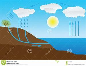 Water Cycle In Nature Stock Photography