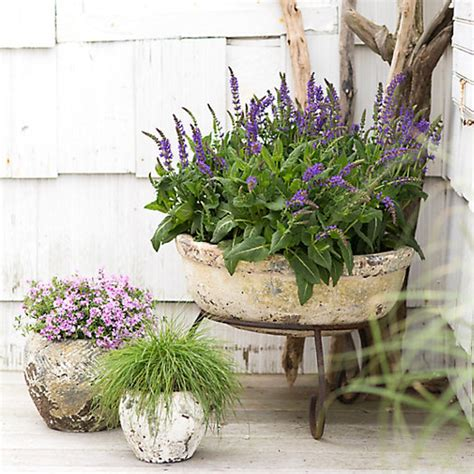 Outdoor Planters by 7 And Funky Indoor And Outdoor Planters Organic