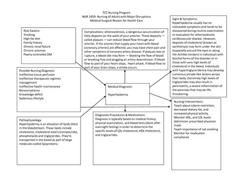 Nursing Concept Maps Templates by Cva Concept Map Nursing Search Nursing