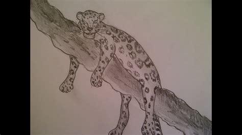 malen mit bleistift zeichnen lernen f 252 r anf 228 nger ein leopard malen tiere raubtiere zeichnen