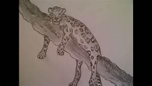 Zeichnungen Mit Bleistift Für Anfänger : zeichnen lernen f r anf nger ein leopard malen tiere raubtiere zeichnen youtube ~ Frokenaadalensverden.com Haus und Dekorationen