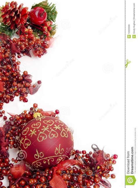 festive christmas berries royalty  stock images