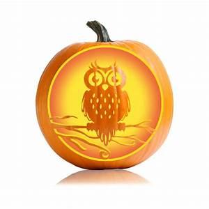 Halloween Owl Pumpkin Pattern - Ultimate Pumpkin Stencils