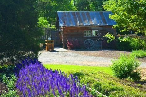 whimsical botanical gardens flovilla
