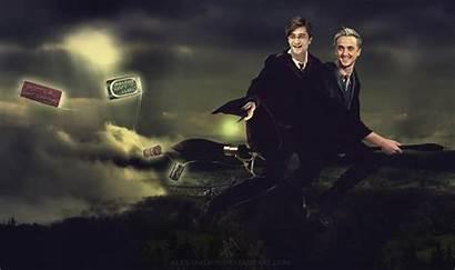 Deviantart Ferret Malfoy Alex Drarry Harry Potter