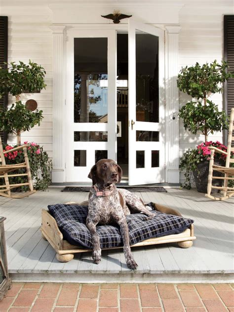 front porch pets front porch decorating ideas from around the country diy