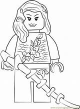 Poison Ivy Coloring Lego Pages Sign Coloringpages101 Printable Template sketch template