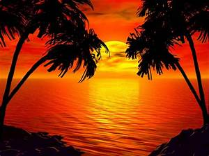 Tropical Paradise Sunset | Wallpapers Gallery