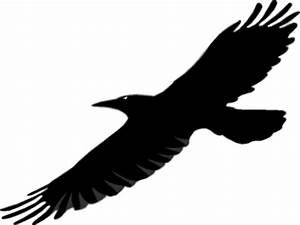Raven Clip Art - Cliparts.co