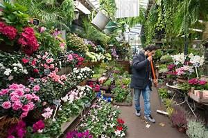 Les Fleurs Paris : le march aux fleurs de paris s adapte au tourisme ~ Voncanada.com Idées de Décoration
