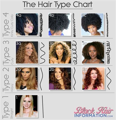 Types Of Hair by Hair Type Classification Grow Hair Hair Type Chart And