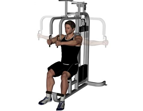Pec Deck Exercise Without Machine by Pec Deck Fly Butterfly Press Bodybuilding Wizard