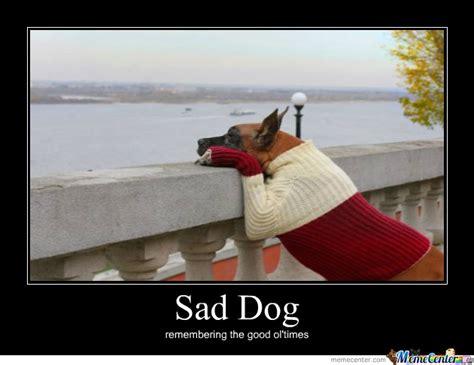Sad Dog Meme - sad dog is sad by pinyaman meme center