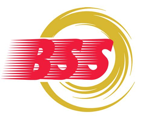 Bss Business Solutions And I.t. Services In Marikina City