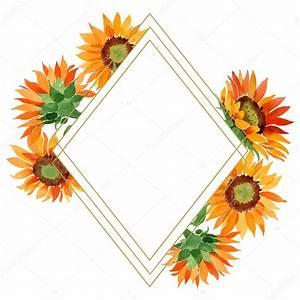 Watercolor, Orange, Sunflower, Flower, Floral, Botanical, Flower, Frame, Border, Ornament, U2014, Stock, Photo