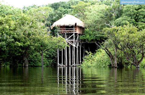 House In The Middle Of The Amazonian Forest by Bungalow Lodges Overlooking River In Rainforest