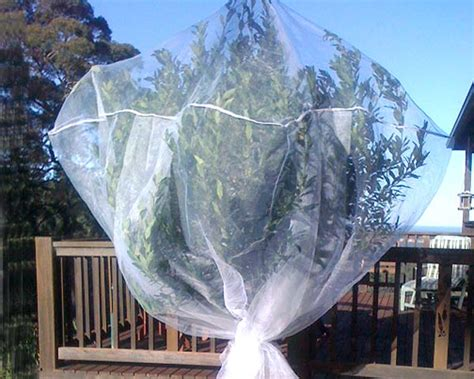 gardensonline fruit saver net