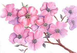 Malen Mit Wasserfarben : wasserfarben archive wie malt zeichnen lernen malen lernen online malkurs mit acryl ~ Orissabook.com Haus und Dekorationen