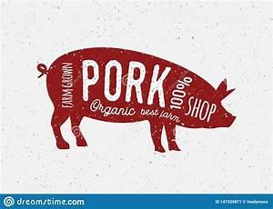 Pork Butcher Vintage Diagram Meat Illustration  Pig Cut
