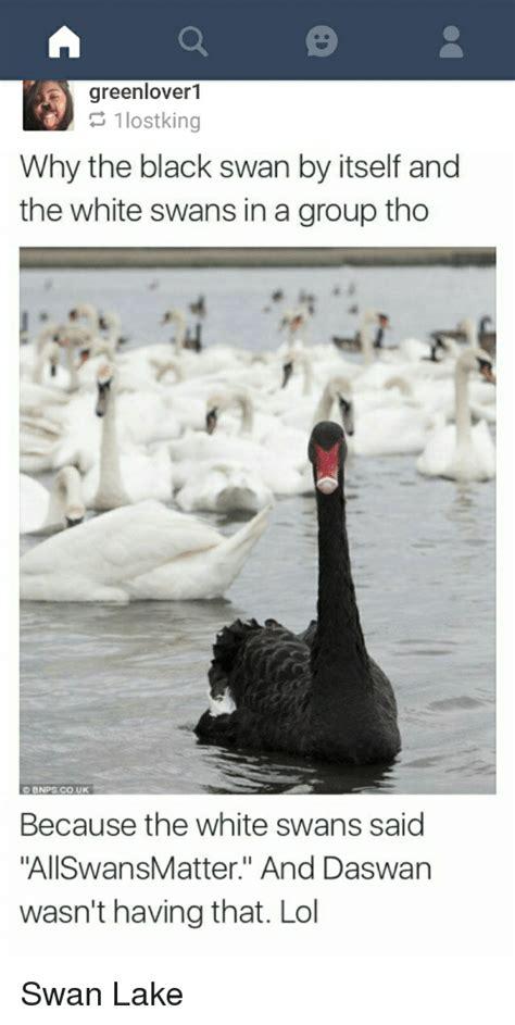 Black Swan Meme - black swan meme 28 images barack swan by mustapan meme center 25 best memes about black