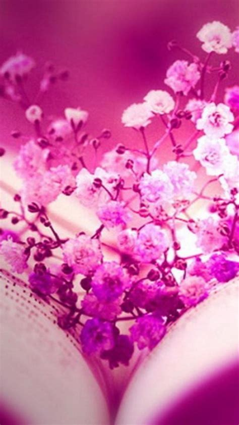 facebook flowers pink books timeline monochrome cover