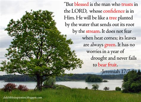 Image result for jeremiah 17:7-8
