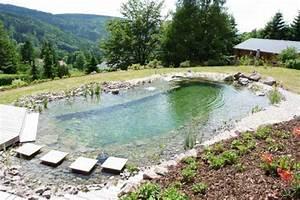 prix d39une piscine quel budget pour quel type de piscine With prix piscine naturelle autoconstruction