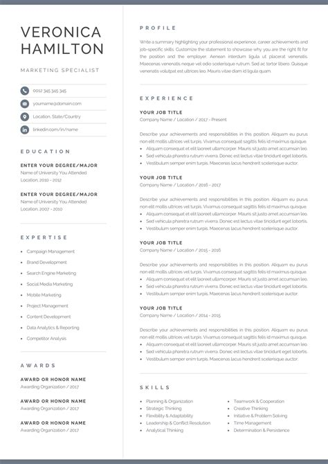 Professional Resume Exles by Professional Resume Template Compact 1 Page Resume