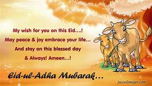 Bakra Eid 2017/ Eid Al Adha Mubarak Wishes Greeting Card ...