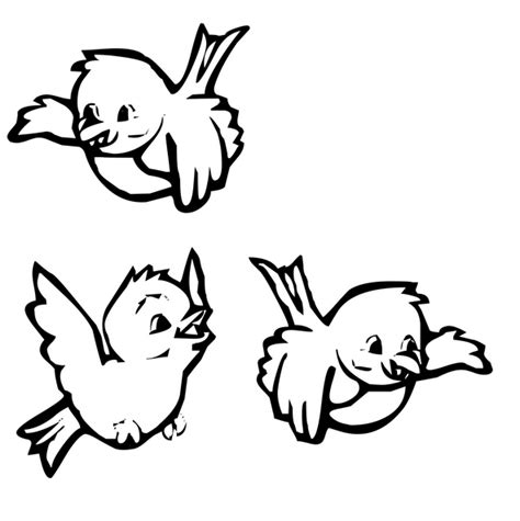 coloring pages  birds  coloring image
