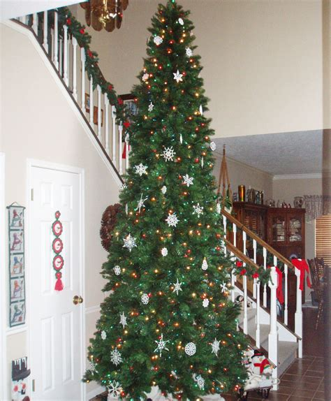 wisconsin fraser fir christmas tree tree classics