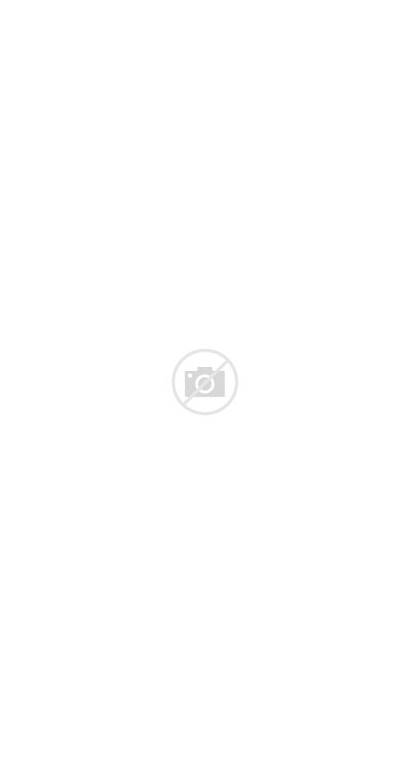 Animated Justice League Series Eaglemoss Collections Batman