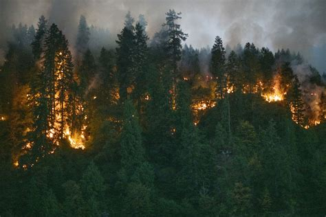 Oregon faces greatest wildfire loss of human lives ...