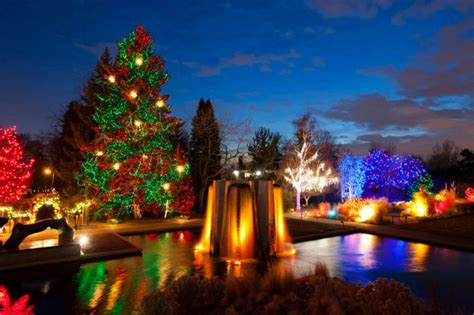 christmas light displays  denver