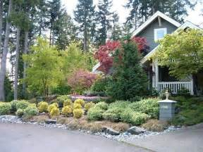 Landscaping with Small Evergreen Shrubs