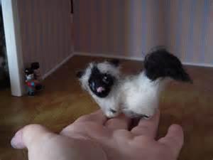 tiny cats ben mcfuzzylugs tiny cat