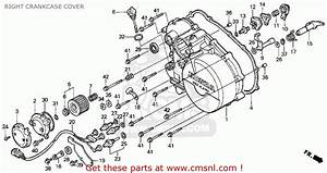 Honda Trx300fw Fourtrax 4x4 1997  V  Usa Right Crankcase