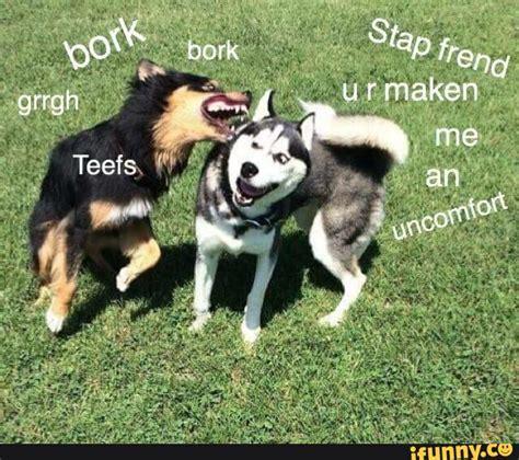 Bork Memes - bork ifunny
