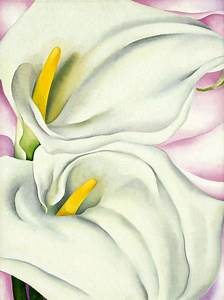 Two Calla Lilies On Pink  1928 By Georgia O U0026 39 Keeffe