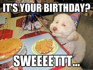 Happy Birthday Images Funny | Very Funny Pics