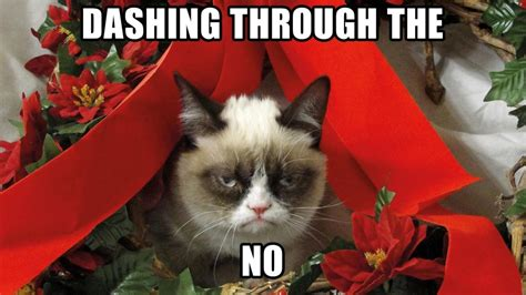 Christmas Cat Meme - 1000 images about grumpy cat on pinterest disney spirit animal and towels