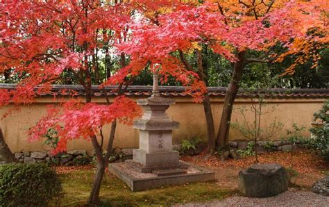 zen garten gestalten das gehoert  einen japanischen