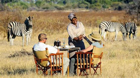 Best Safaris In Kenya Tanzania Safari Experience Africa Tours