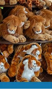Plushies Bengal Tigers And White Tigers At Busch Gardens 1 ...