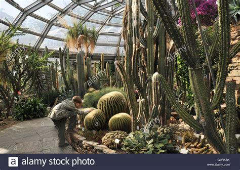 Botanischer Garten Berlin Verkauf by Kakteen Und Sukkulenten Haus Botanischer Garten Dahlem