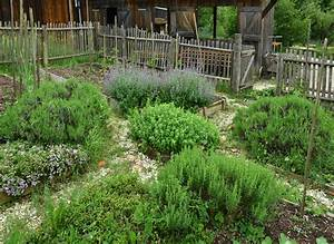 krautergarten anlegen so gelingt es im handumdrehen With französischer balkon mit säulenförmige bäume für kleine gärten