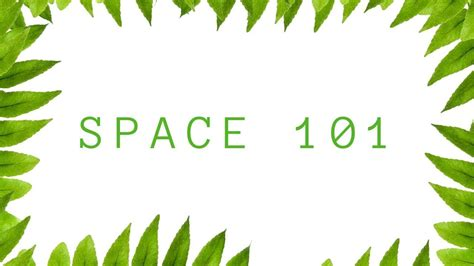 elements  principles  floral design space