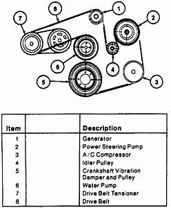 I Need A Serpentine Belt Routing Diagram For A 1995 Ford