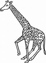Giraffe Coloring Giraffes Animals Printable Supercoloring Bestcoloringpagesforkids Galloping sketch template